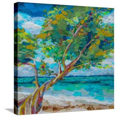Beach Tree--Stretched Canvas Print