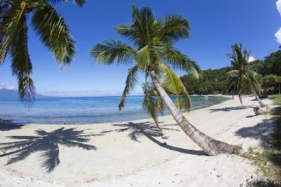 Beach, Waitatavi Bay, Vanua Levu, Fiji-Douglas Peebles-Photographic Print