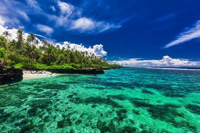 Beach with Coral Reef on South Side of Upolu, Samoa Islands-Martin Valigursky-Photographic Print
