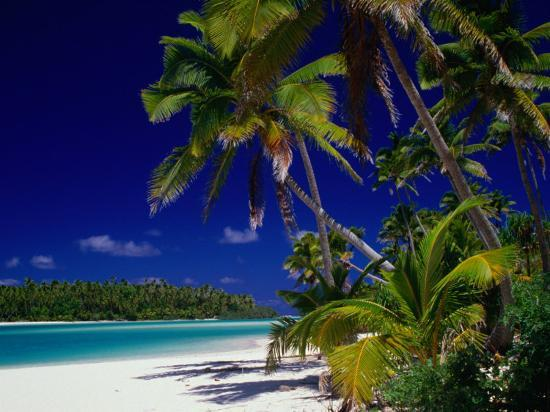 Beach with Palm Trees on Island in Aitutaki Lagoon,Aitutaki,Southern Group, Cook Islands-Dallas Stribley-Photographic Print