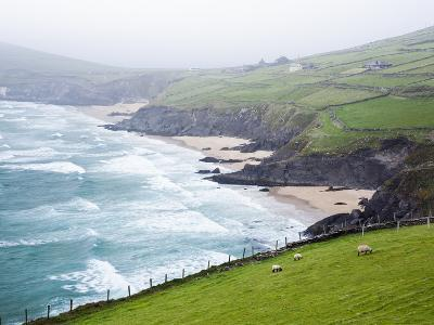 Beaches at Slea Head on Dingle Peninsula-Jorg Greuel-Photographic Print