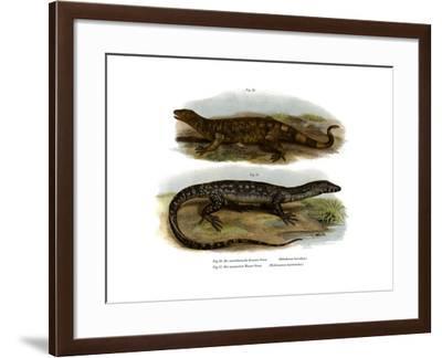 Beaded Lizard--Framed Giclee Print