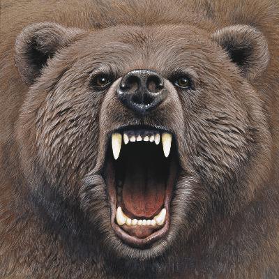 Bear 2-Harro Maass-Giclee Print