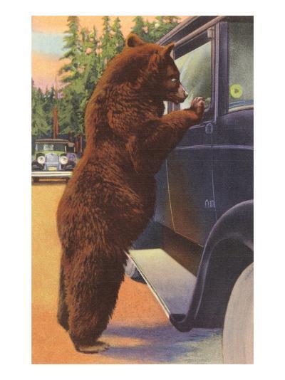 Bear at Car Window--Art Print