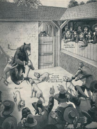 'Bear-Baiting in a Stuart Bear Pit', c1934-Unknown-Giclee Print