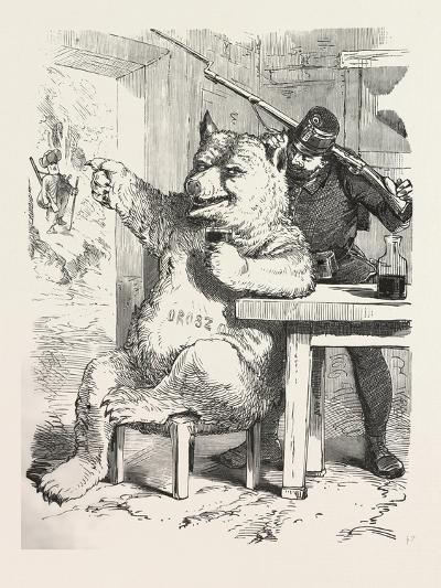 Bear Having a Glass of Wine--Giclee Print