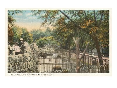 Bear Pit, Lincoln Park Zoo, Chicago, Illinois--Art Print