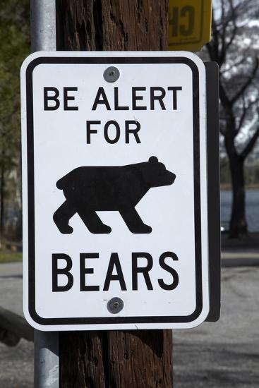 Bear Warning Sign, Silver Lake Resort, Eastern Sierra, California-David Wall-Photographic Print