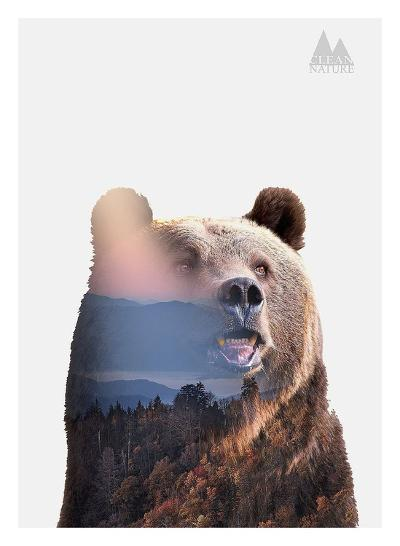 Bear-Clean Nature-Art Print
