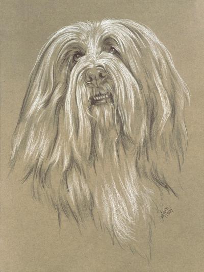 Bearded Collie-Barbara Keith-Giclee Print