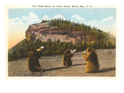 Bears at Indian Head, White Mountains, New Hampshire--Art Print