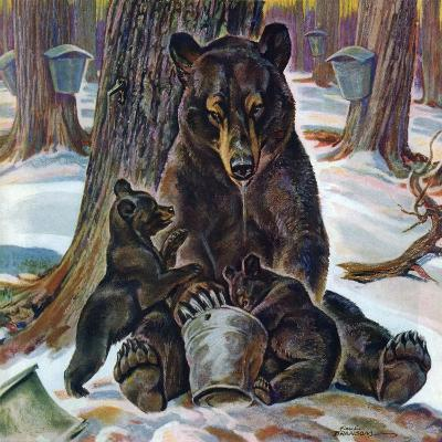 """""""Bears Eating Maple Syrup,"""" March 28, 1942-Paul Bransom-Giclee Print"""