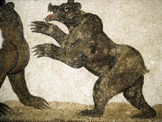 Bears Fighting, detail of Roman floor mosaic, from Utica, Tunisia, c3rd century-Unknown-Giclee Print
