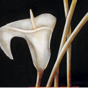Lily in Sepia I by Beate Emanuel