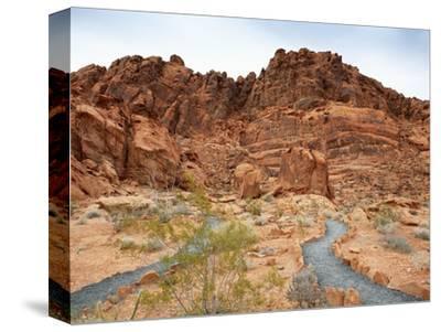 Rural Trail Through Desert