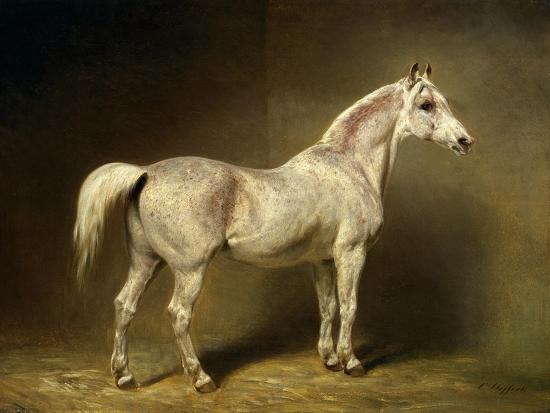 Beatrice, the White Arab Saddlehorse of Helmuth Graf Von Moltke, 1855-Carl Constantin Steffeck-Giclee Print