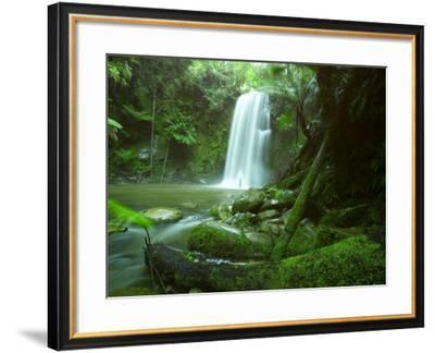 Beauchamp Fall, Waterfall in the Rainforest, Otway N.P., Great Ocean Road, Victoria, Australia-Thorsten Milse-Framed Photographic Print