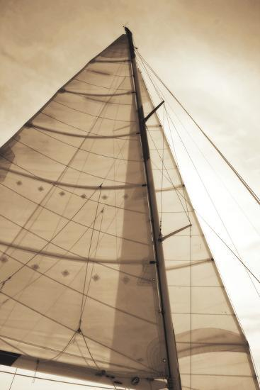 Beaufort Sails I-Alan Hausenflock-Photographic Print