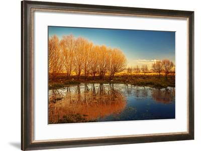 Beautiful Autumn Landscape, Dry Trees, Blue Sky, Tree Reflected in Lake, Seasons Change, Sunny Day,-Anna Omelchenko-Framed Photographic Print