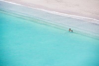 Beautiful Beach, Bay of Islands, in the Waikare Inlet Near Russell, Northland Region, North Island-Matthew Williams-Ellis-Photographic Print