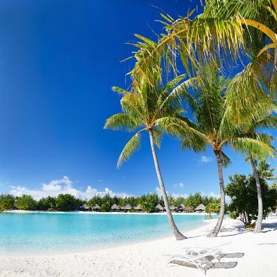Beautiful Beach with Coconut Palms on Bora Bora Island in French Polynesia-BlueOrange Studio-Photographic Print