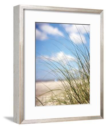 Beautiful Day-Lisa Colberg-Framed Art Print