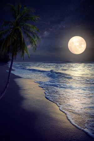 https://imgc.artprintimages.com/img/print/beautiful-fantasy-tropical-beach-with-milky-way-star-in-night-skies-full-moon-retro-style-artwor_u-l-q1a2a7j0.jpg?artPerspective=n