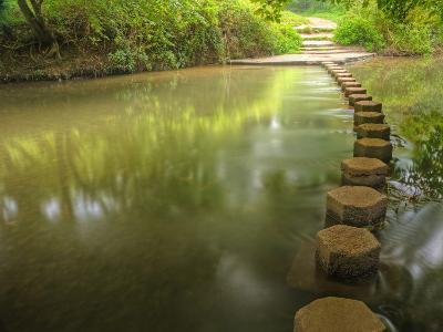 Beautiful Forest Scene of Enchanted Stream Flowing through Lush-Veneratio-Photographic Print