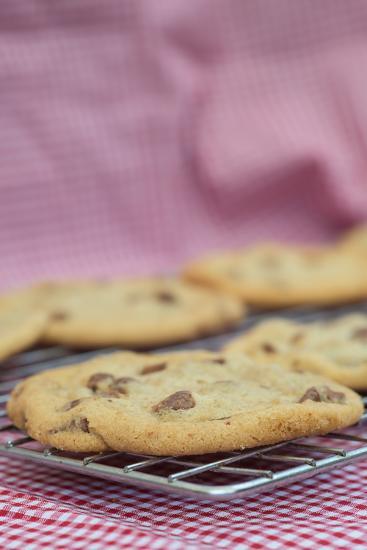 Beautiful Fresh Hand Made Chocolate Chip Cookies-Veneratio-Photographic Print