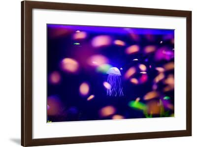 Beautiful Jellyfish, Medusa in the Neon Light with the Fishes. Aquarium with Blue Jellyfish and Lot-The Len-Framed Photographic Print