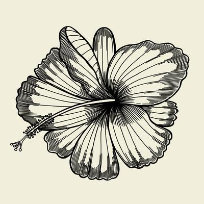 https://imgc.artprintimages.com/img/print/beautiful-lily-painted-in-a-graphic-style-points-and-lines-a-great-figure-for-a-tattoo_u-l-q1alm0f0.jpg?p=0