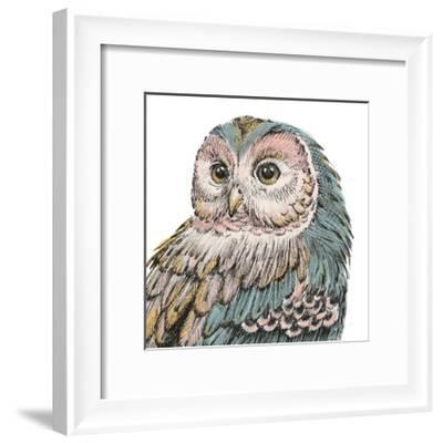 Beautiful Owls I Pastel Crop-Daphne Brissonnet-Framed Art Print