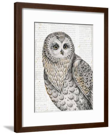 Beautiful Owls IV-Daphne Brissonnet-Framed Art Print