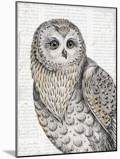 Beautiful Owls IV-Daphne Brissonnet-Mounted Art Print