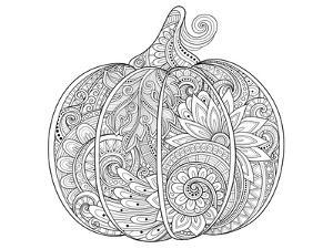 Beautiful Pumpkin Coloring Art