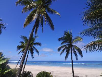 Beautiful Sandy Beach and Palms at Ngazidja, Grand Comore, Comoros, Indian Ocean, Africa--Photographic Print