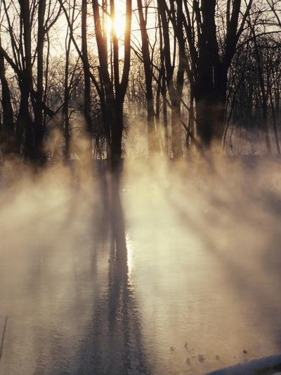 Beautiful Sunlight Streaming Through Mist and Forest--Photographic Print