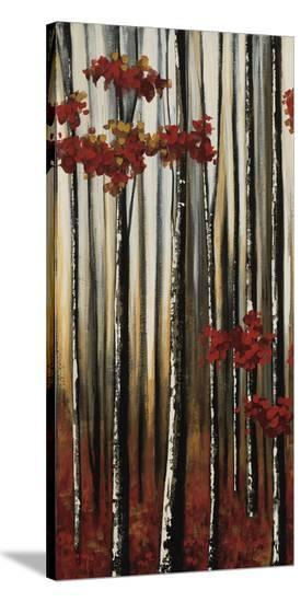 Beauty Within I-Oscar Soler-Stretched Canvas Print