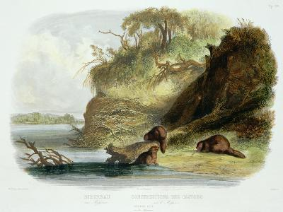 Beaver Hut on the Missouri, Plate 17, Travels in the Interior of North America-Karl Bodmer-Giclee Print