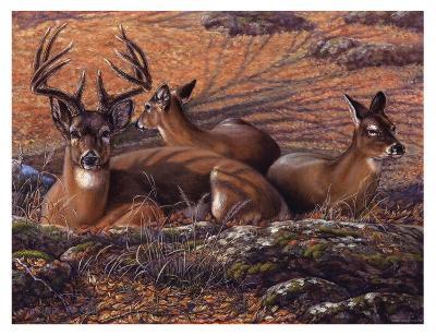 Bed of Leaves-Carolyn Mock-Art Print
