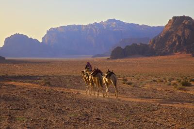 Bedouin with Camels, Wadi Rum, Jordan, Middle East-Neil Farrin-Photographic Print