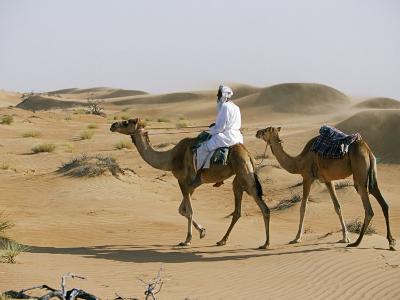 Bedu Rides His Camel Amongst the Sand Dunes in the Desert-John Warburton-lee-Photographic Print