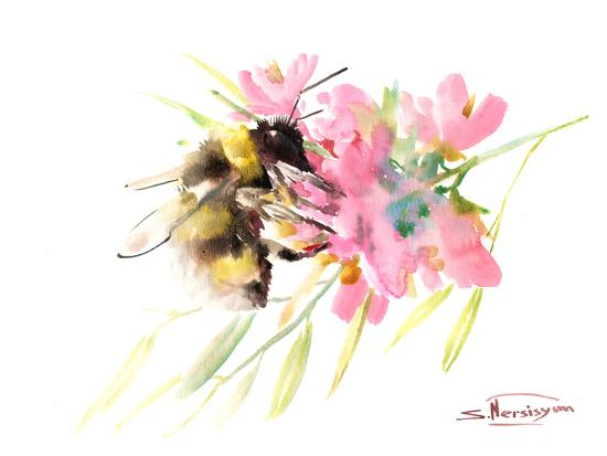 Bee And Soft Pink Flowers Art Print By Suren Nersisyan Art
