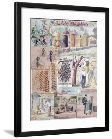 Bee Culture Made in France Intended for Publication in Mexico, C. 1900--Framed Giclee Print