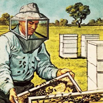 Bee Keeper-English School-Giclee Print