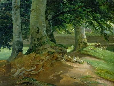 Beech Trees in Frederiksdal Near Copenhagen, 1828-Christian Ernst Bernhard Morgenstern-Giclee Print