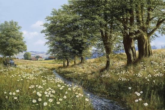 Beeches And Daisies-Bill Makinson-Giclee Print