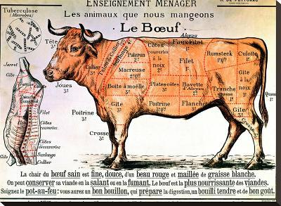 Beef: Diagram Depicting the Different Cuts of Meat--Stretched Canvas Print