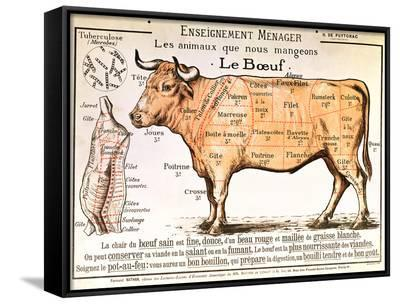 Beef: Diagram Depicting the Different Cuts of Meat--Framed Canvas Print