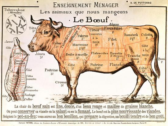 Beef: Diagram Depicting the Different Cuts of Meat--Premium Giclee Print
